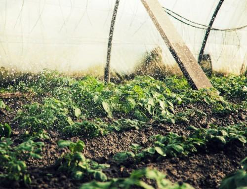 Poljoprivrednici, saznajte kako do besplatnog sustava za navodnjavanje