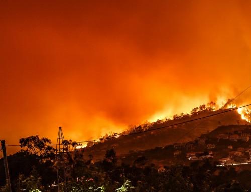 Velik broj vatrogasnih intervencija