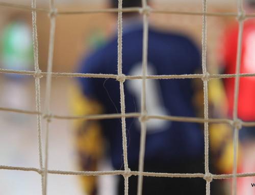 Sportski mozaik