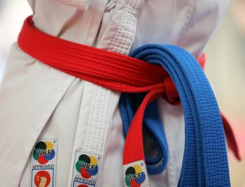 32. tradicionalni međunarodni Karate kup mladosti 2020.