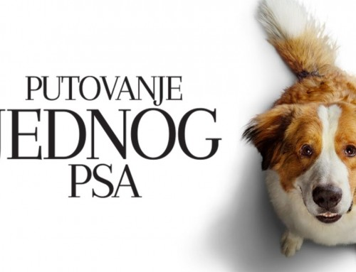 Putovanje jednog psa – SUBOTA 9.11. 2019. u 17.00 sati
