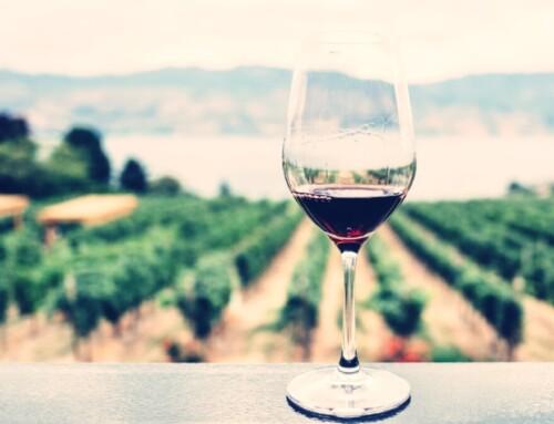 """Hrvatski vinari mogu koristiti naziv """"Teran"""" na svojim etiketama boca vina"""