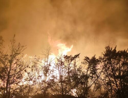Najviše požara u Splitsko-dalmatinskoj i Šibensko-kninskoj županiji